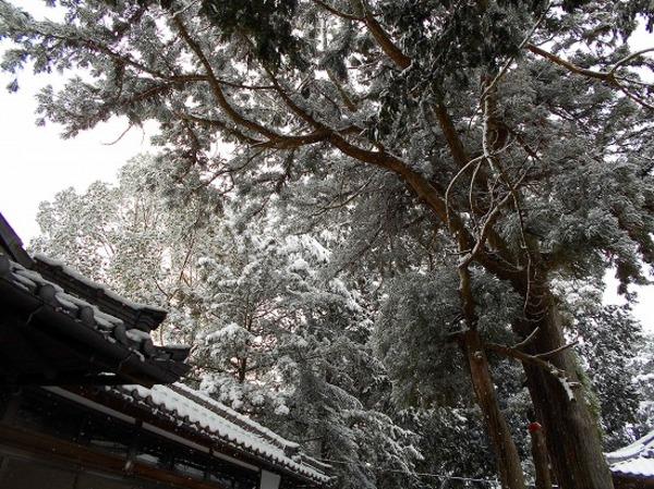 (雪の)長澤神社 野洲市比江